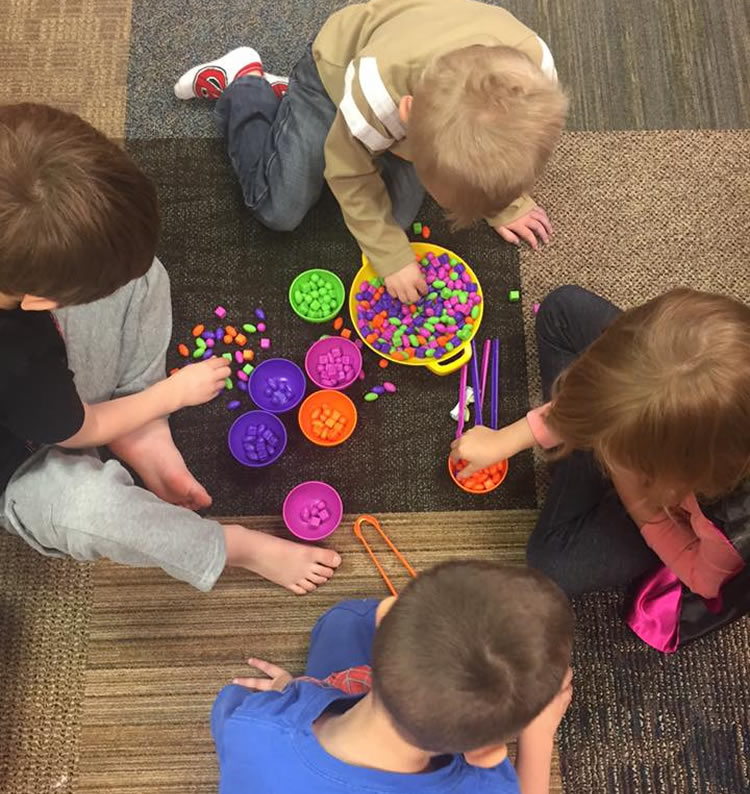 Sorting and Fine Motor